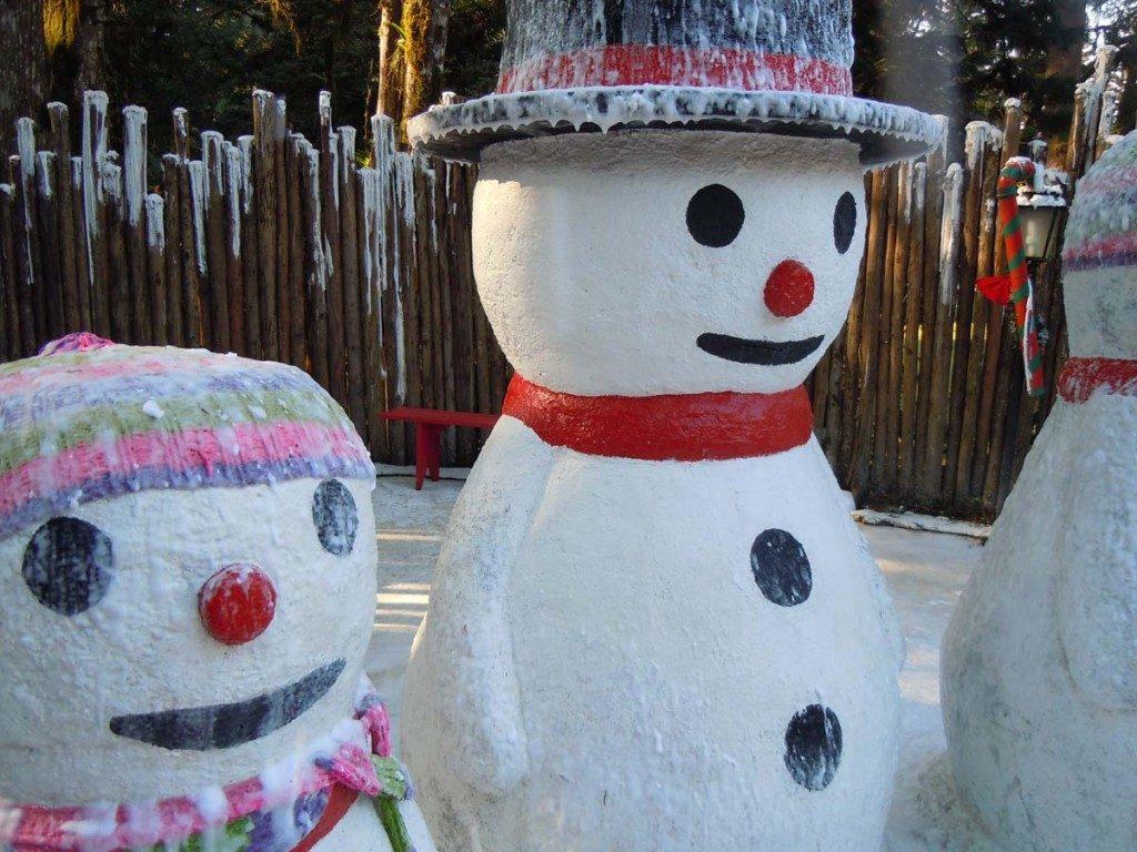 Aldeia do Papai Noel é diversão garantida para a família toda. Foto: Divulgação