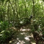 Ecoparque Sperry - Mapa de Gramado. Foto: Bárbara Keller